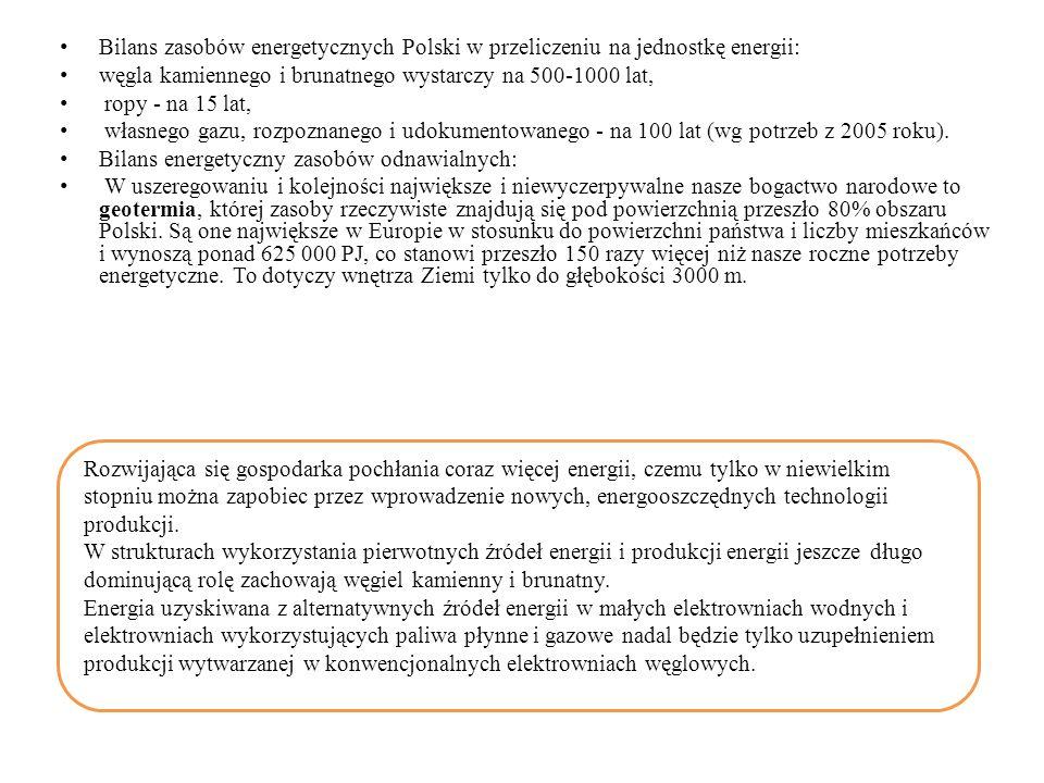 Bilans zasobów energetycznych Polski w przeliczeniu na jednostkę energii: