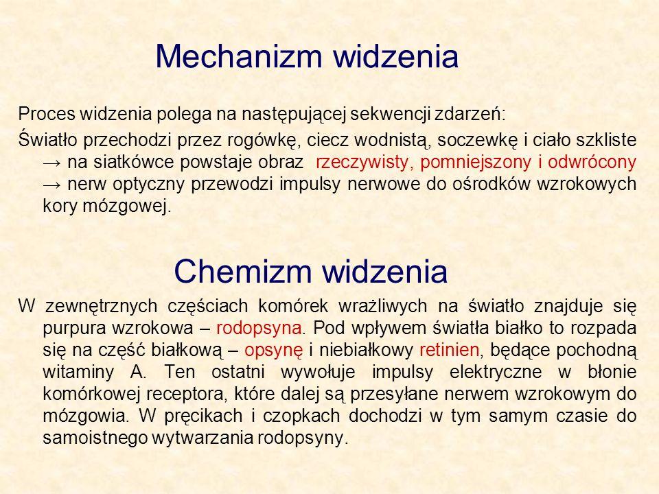Mechanizm widzenia Chemizm widzenia