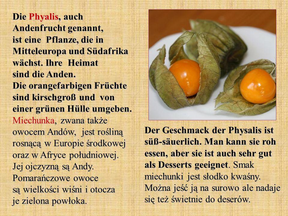 Die Phyalis, auch Andenfrucht genannt, ist eine Pflanze, die in Mitteleuropa und Südafrika wächst. Ihre Heimat sind die Anden. Die orangefarbigen Früchte sind kirschgroß und von einer grünen Hülle umgeben. Miechunka, zwana także owocem Andów, jest rośliną rosnącą w Europie środkowej oraz w Afryce południowej. Jej ojczyzną są Andy. Pomarańczowe owoce są wielkości wiśni i otocza je zielona powłoka.