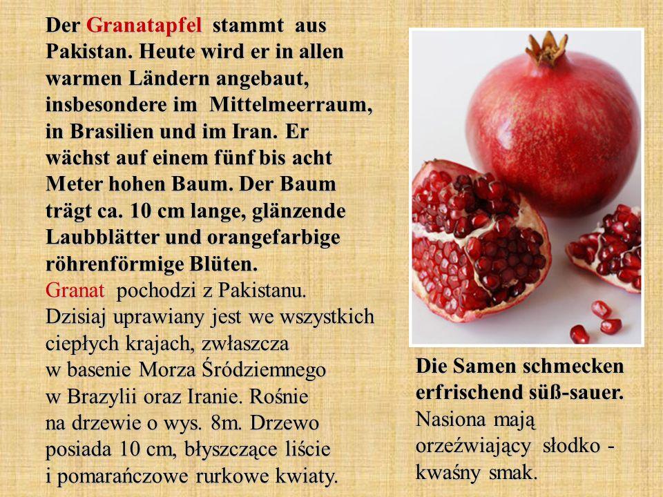 Der Granatapfel stammt aus Pakistan