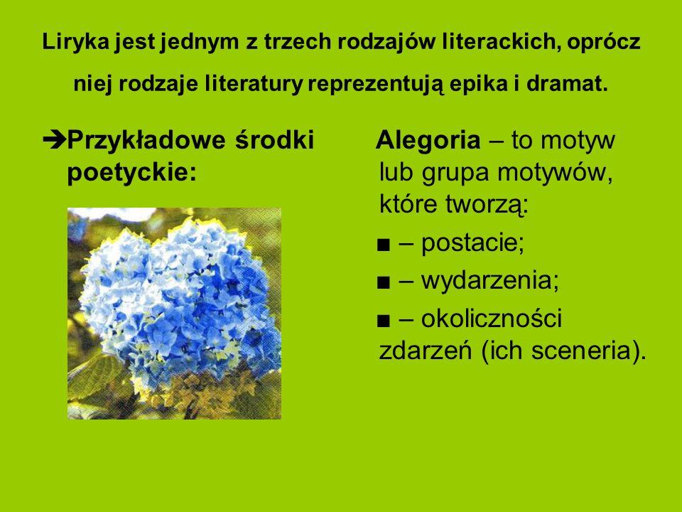 Przykładowe środki poetyckie: