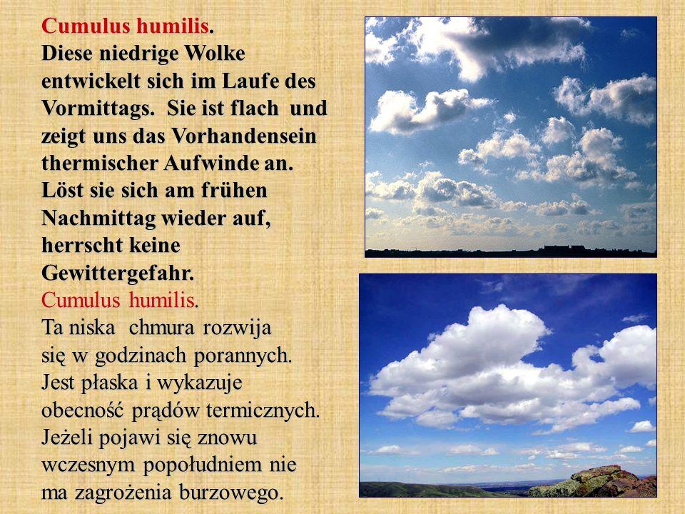 Cumulus humilis. Diese niedrige Wolke entwickelt sich im Laufe des Vormittags.