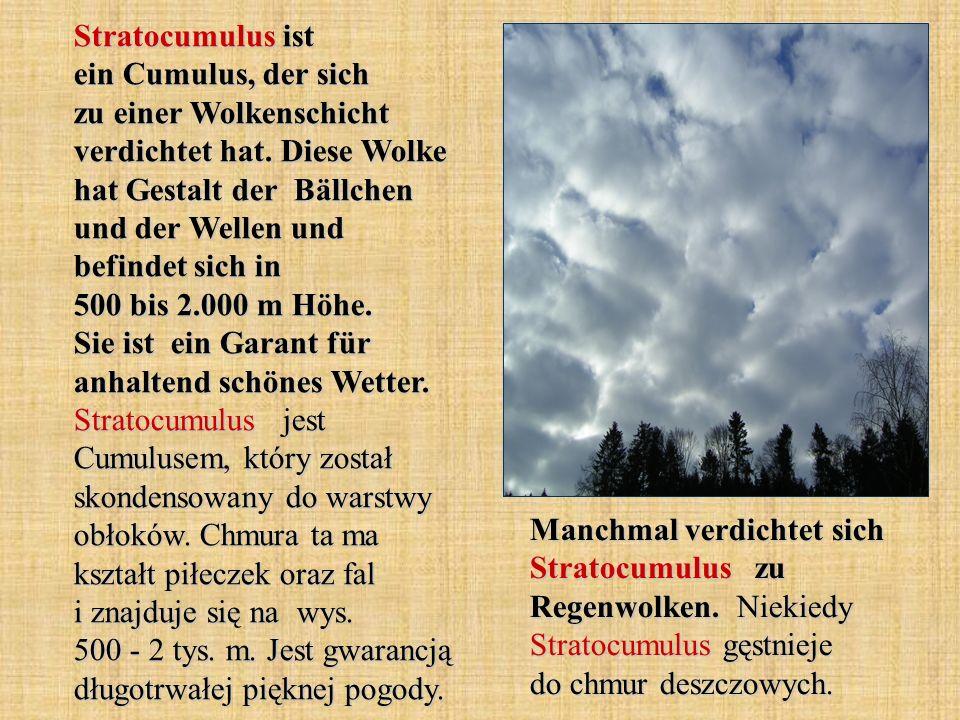Stratocumulus ist ein Cumulus, der sich zu einer Wolkenschicht verdichtet hat. Diese Wolke hat Gestalt der Bällchen und der Wellen und befindet sich in 500 bis 2.000 m Höhe. Sie ist ein Garant für anhaltend schönes Wetter. Stratocumulus jest Cumulusem, który został skondensowany do warstwy obłoków. Chmura ta ma kształt piłeczek oraz fal i znajduje się na wys. 500 - 2 tys. m. Jest gwarancją długotrwałej pięknej pogody.