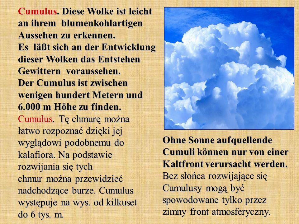 Cumulus. Diese Wolke ist leicht an ihrem blumenkohlartigen Aussehen zu erkennen. Es läßt sich an der Entwicklung dieser Wolken das Entstehen Gewittern voraussehen. Der Cumulus ist zwischen wenigen hundert Metern und 6.000 m Höhe zu finden. Cumulus. Tę chmurę można łatwo rozpoznać dzięki jej wyglądowi podobnemu do kalafiora. Na podstawie rozwijania się tych chmur można przewidzieć nadchodzące burze. Cumulus występuje na wys. od kilkuset do 6 tys. m.