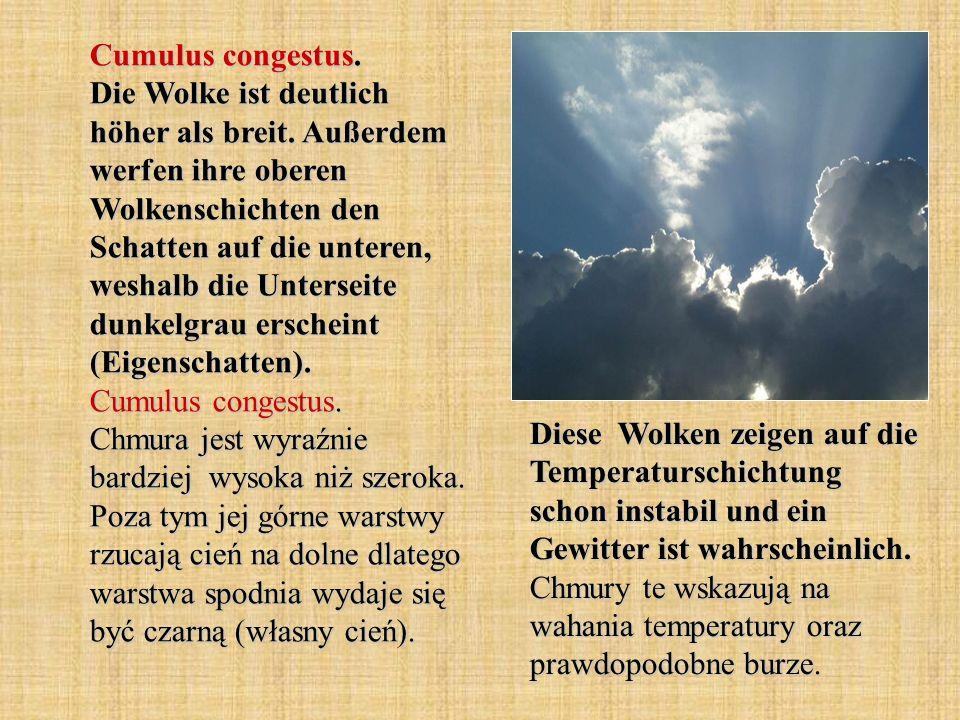 Cumulus congestus. Die Wolke ist deutlich höher als breit