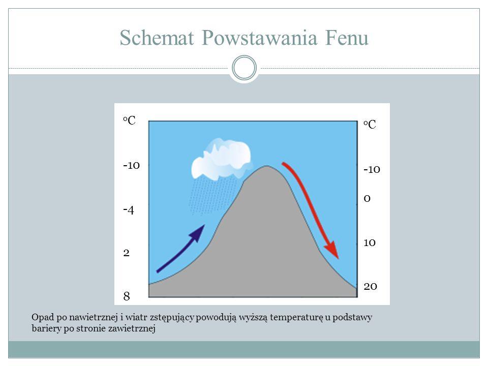 Schemat Powstawania Fenu