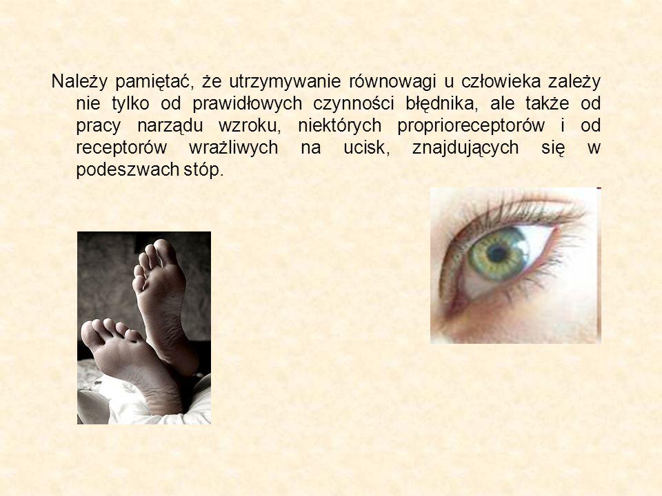 Należy pamiętać, że utrzymywanie równowagi u człowieka zależy nie tylko od prawidłowych czynności błędnika, ale także od pracy narządu wzroku, niektórych proprioreceptorów i od receptorów wrażliwych na ucisk, znajdujących się w podeszwach stóp.
