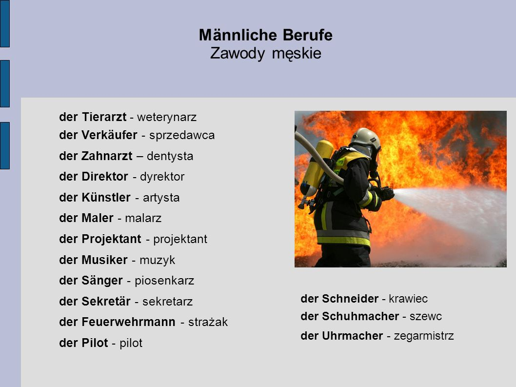 Männliche Berufe Zawody męskie der Tierarzt - weterynarz