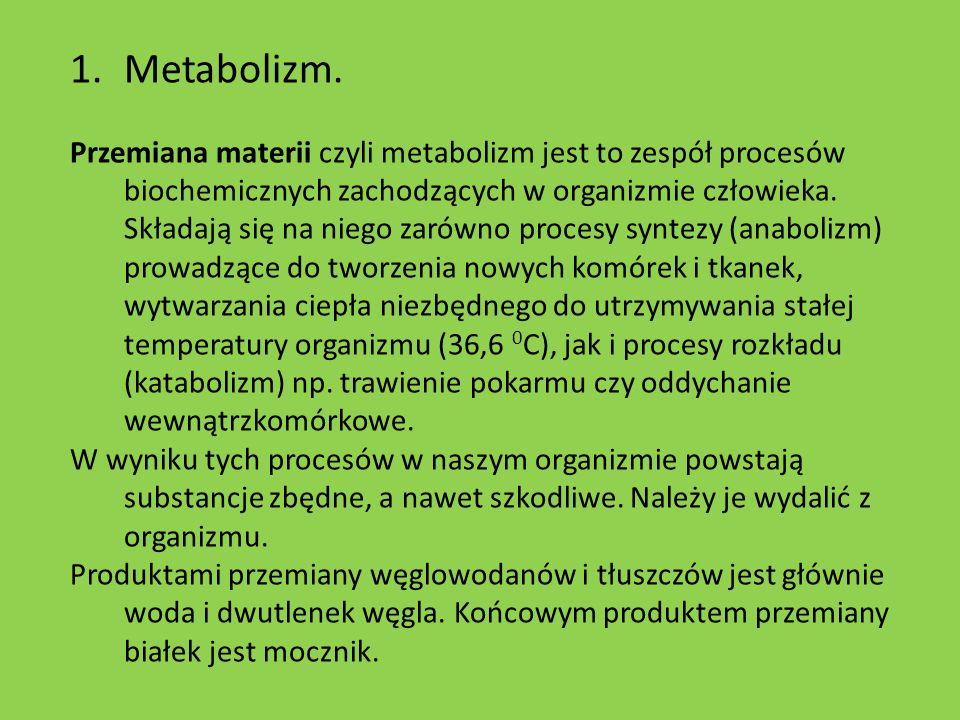Metabolizm.