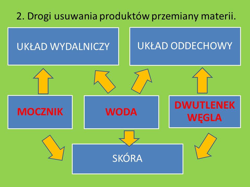 2. Drogi usuwania produktów przemiany materii. UKŁAD WYDALNICZY