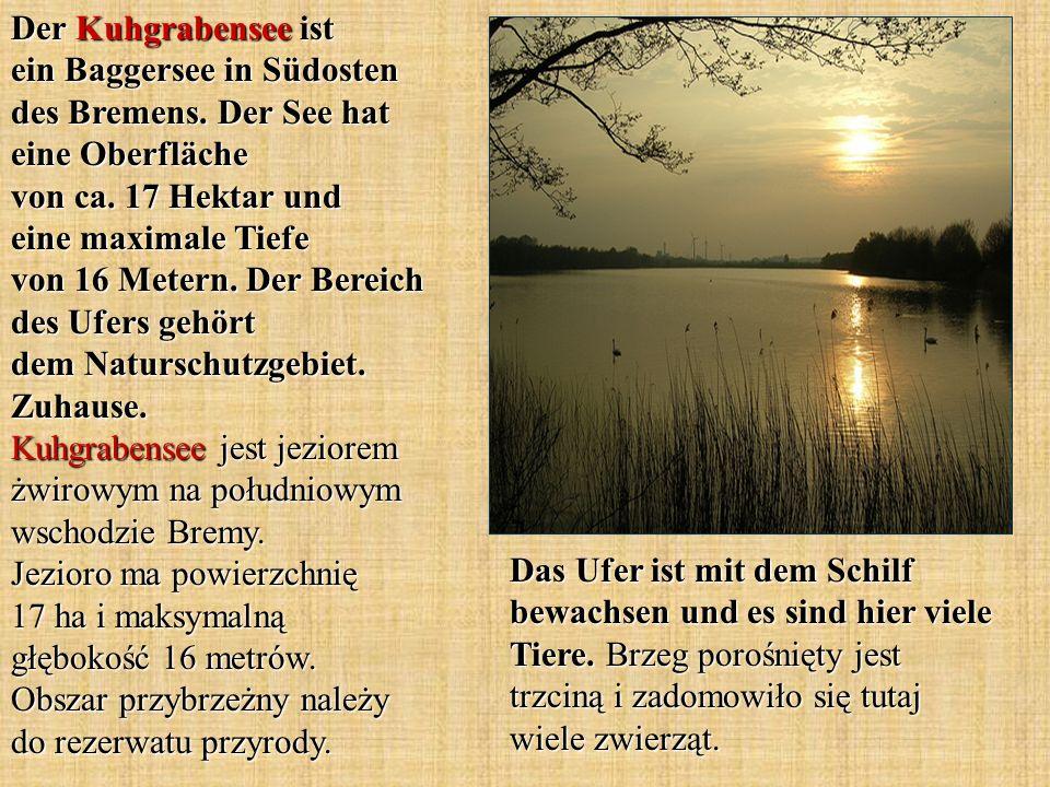 Der Kuhgrabensee ist ein Baggersee in Südosten des Bremens