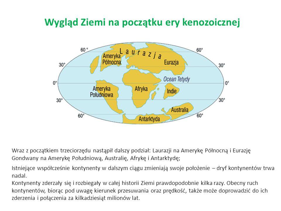 Wygląd Ziemi na początku ery kenozoicznej