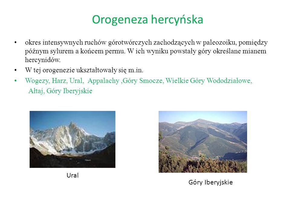 Orogeneza hercyńska