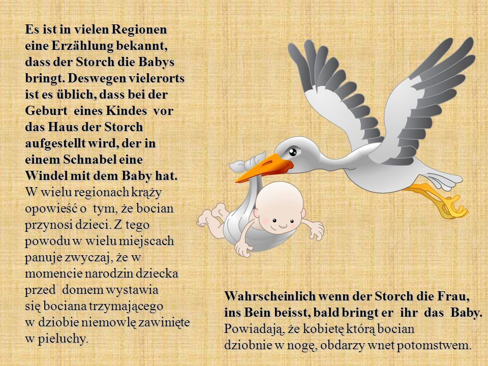 Es ist in vielen Regionen eine Erzählung bekannt, dass der Storch die Babys bringt. Deswegen vielerorts ist es üblich, dass bei der Geburt eines Kindes vor das Haus der Storch aufgestellt wird, der in einem Schnabel eine Windel mit dem Baby hat. W wielu regionach krąży opowieść o tym, że bocian przynosi dzieci. Z tego powodu w wielu miejscach panuje zwyczaj, że w momencie narodzin dziecka przed domem wystawia się bociana trzymającego w dziobie niemowlę zawinięte w pieluchy.