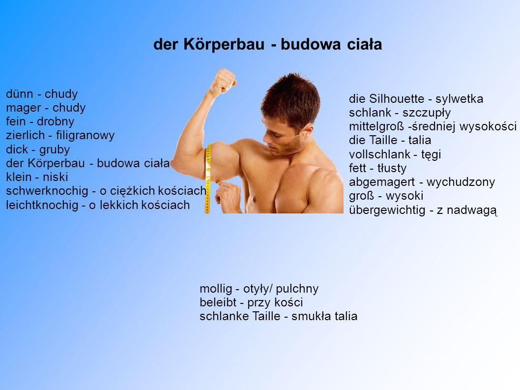 der Körperbau - budowa ciała