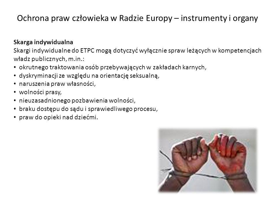 Ochrona praw człowieka w Radzie Europy – instrumenty i organy