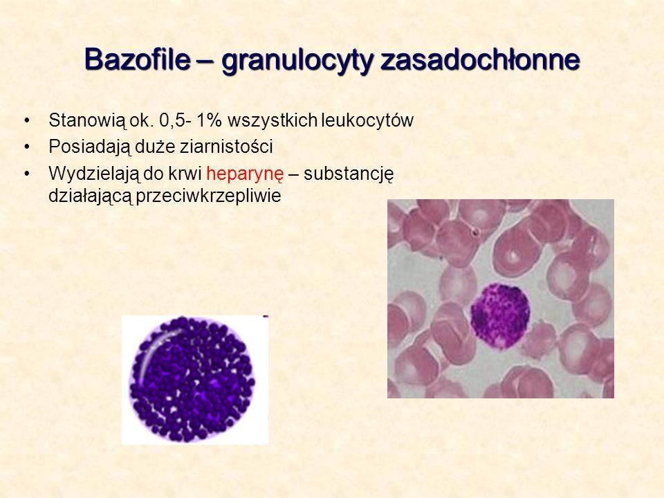 Bazofile – granulocyty zasadochłonne