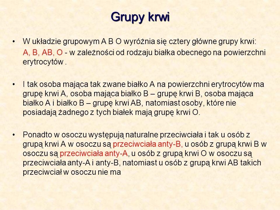 Grupy krwi W układzie grupowym A B O wyróżnia się cztery główne grupy krwi: