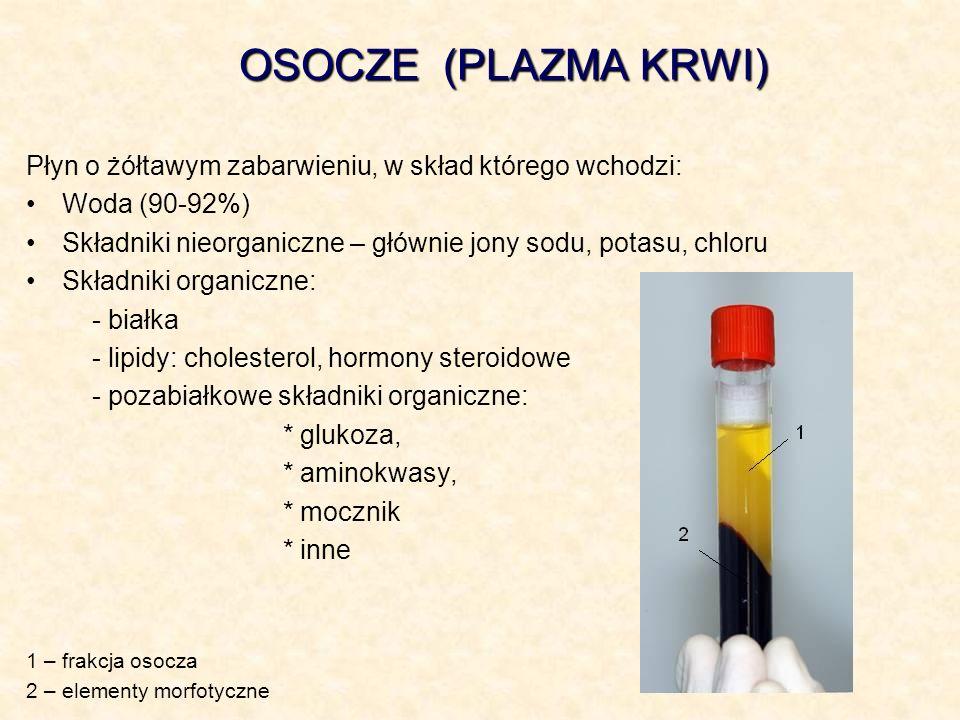 OSOCZE (PLAZMA KRWI)Płyn o żółtawym zabarwieniu, w skład którego wchodzi: Woda (90-92%) Składniki nieorganiczne – głównie jony sodu, potasu, chloru.