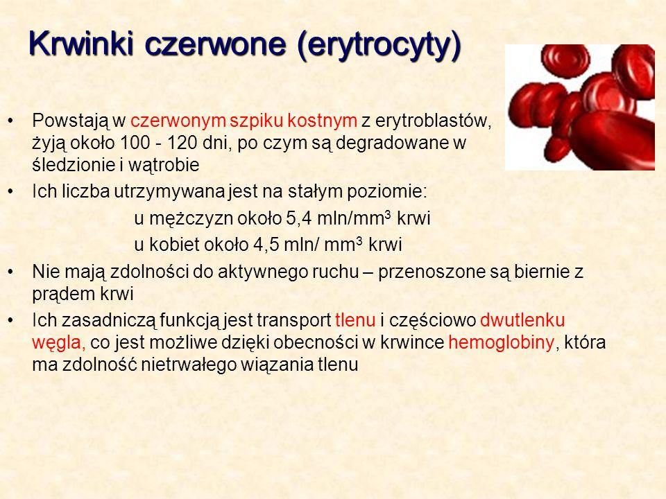 Krwinki czerwone (erytrocyty)