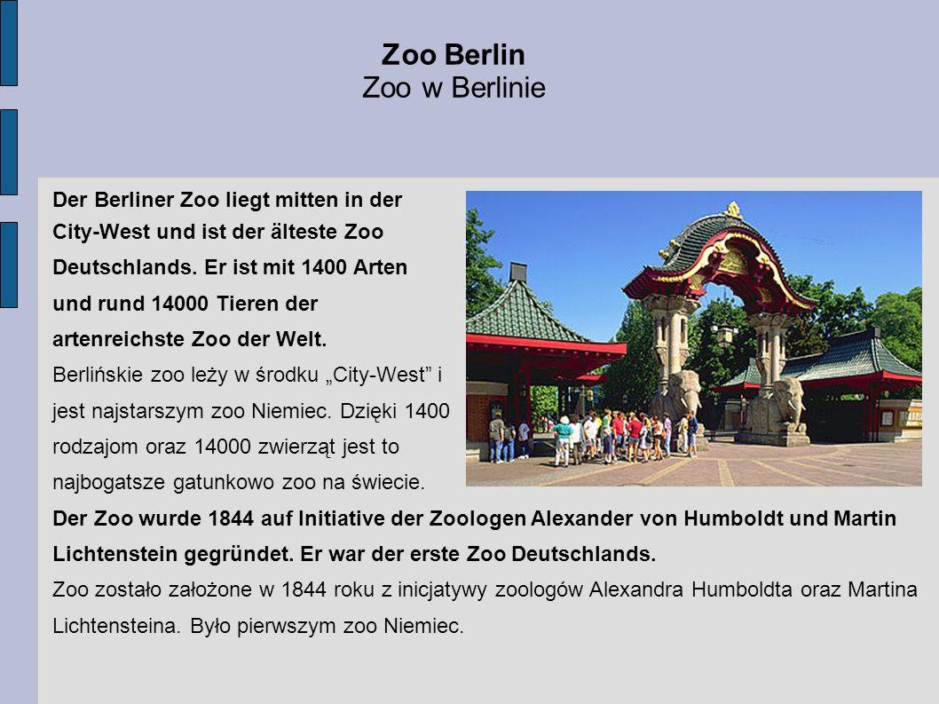 Zoo Berlin Zoo w Berlinie Der Berliner Zoo liegt mitten in der