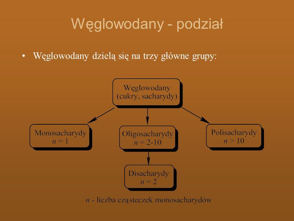 Węglowodany - podział Węglowodany dzielą się na trzy główne grupy: