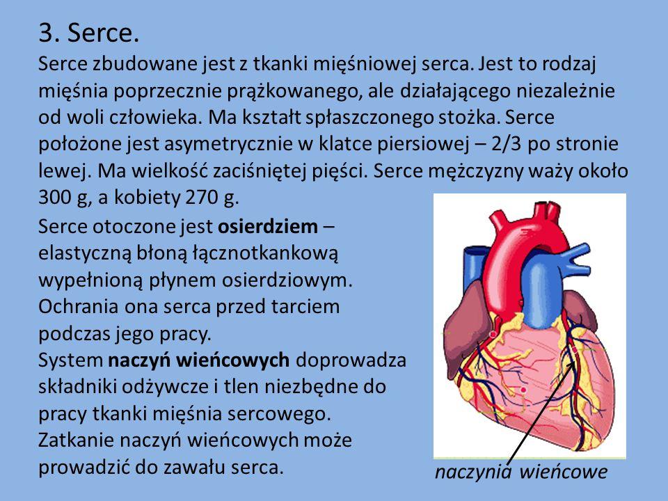 3. Serce.