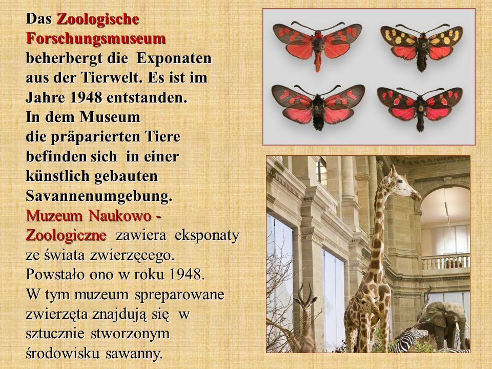Das Zoologische Forschungsmuseum beherbergt die Exponaten aus der Tierwelt.