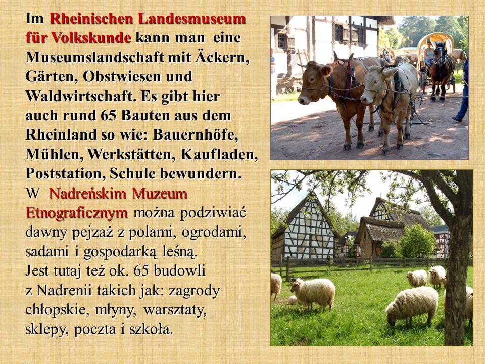 Im Rheinischen Landesmuseum für Volkskunde kann man eine Museumslandschaft mit Äckern, Gärten, Obstwiesen und Waldwirtschaft.