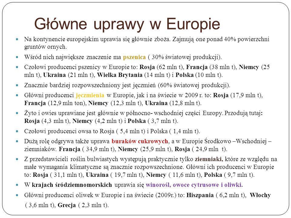 Główne uprawy w Europie