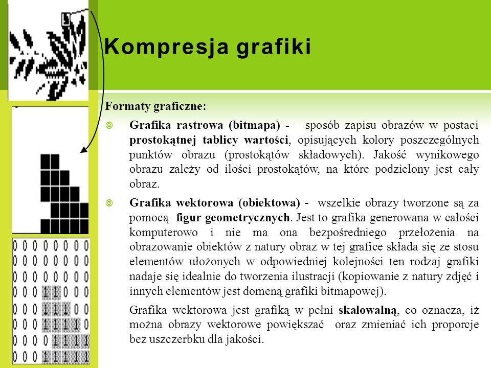 Kompresja grafiki Formaty graficzne: