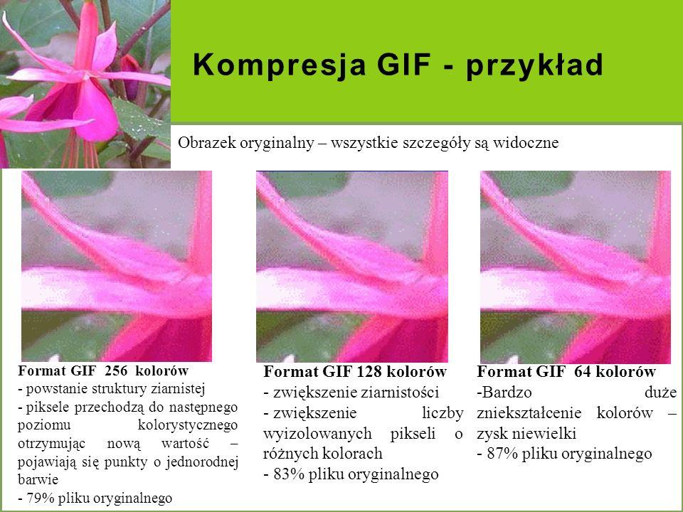 Kompresja GIF - przykład