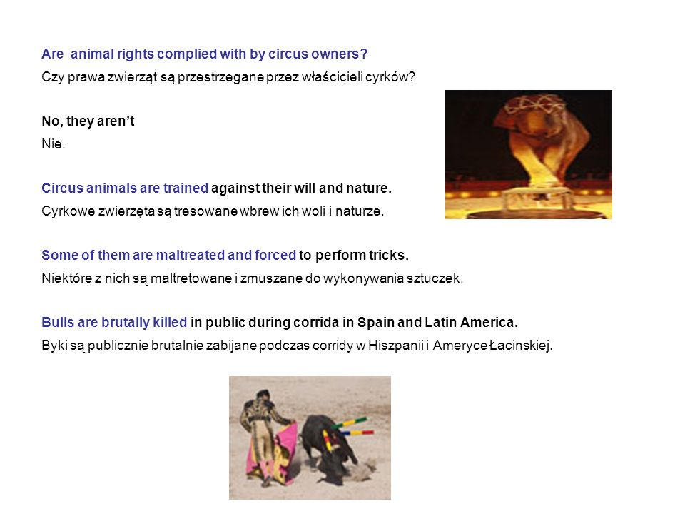 Are animal rights complied with by circus owners