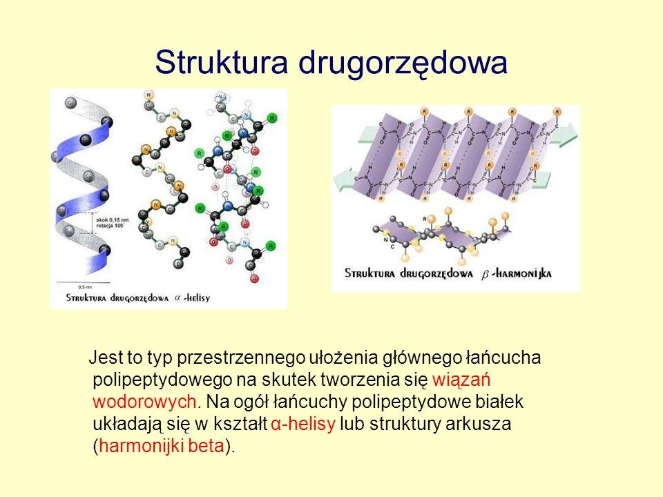 Struktura drugorzędowa