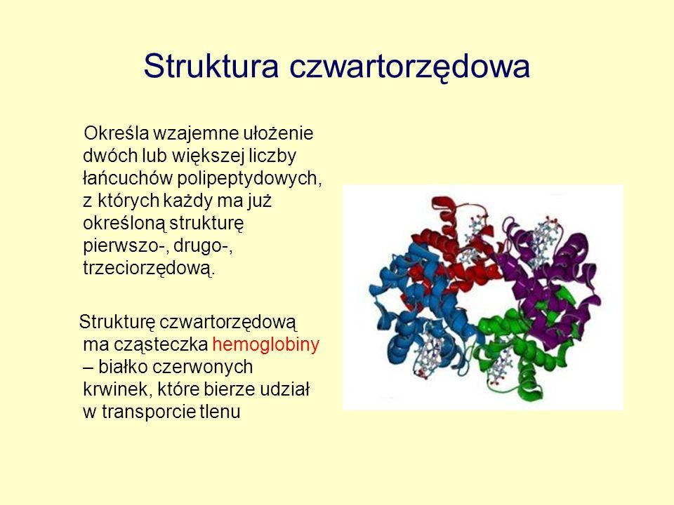 Struktura czwartorzędowa