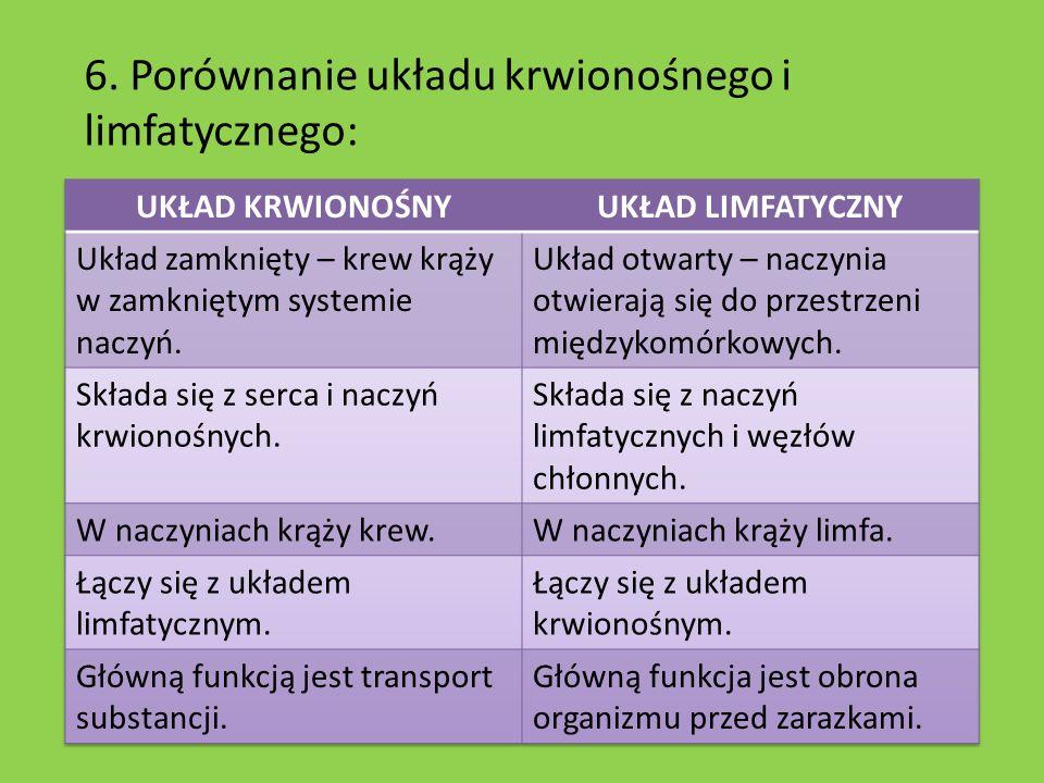 6. Porównanie układu krwionośnego i limfatycznego: