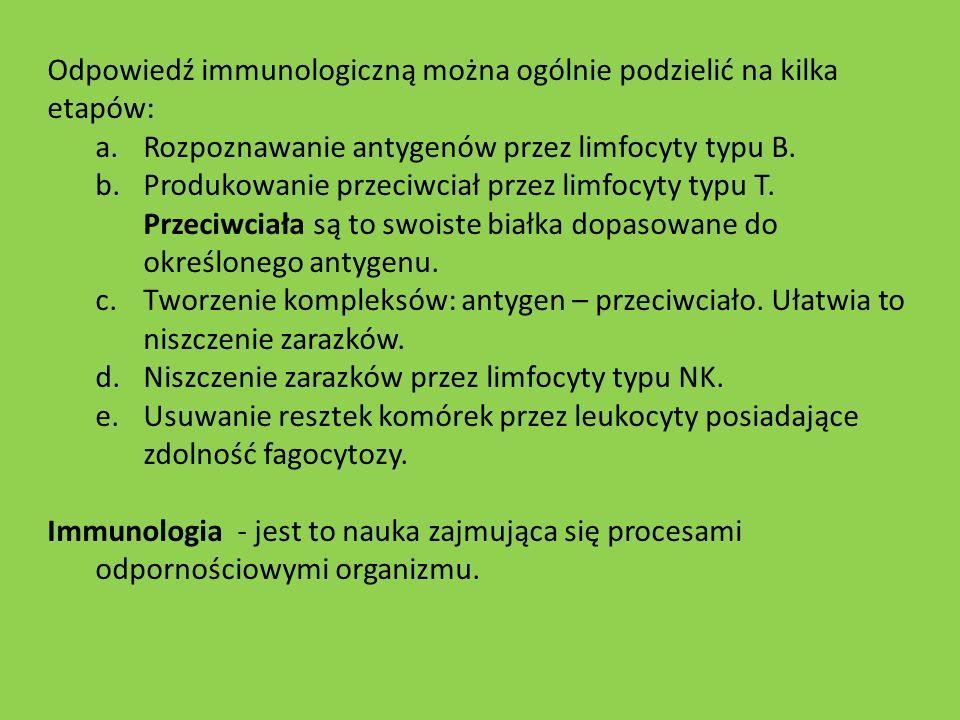 Odpowiedź immunologiczną można ogólnie podzielić na kilka etapów: