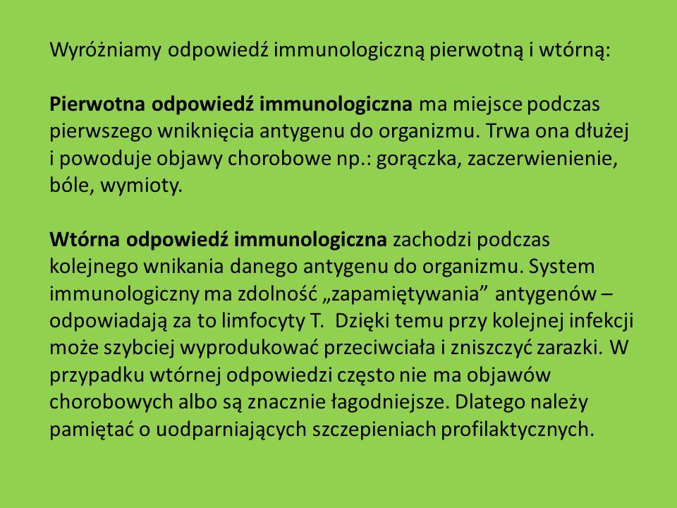 Wyróżniamy odpowiedź immunologiczną pierwotną i wtórną: