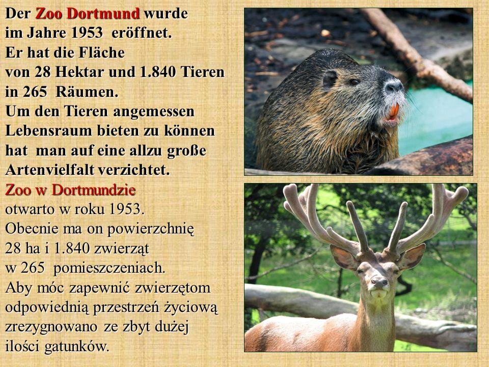 Der Zoo Dortmund wurde im Jahre 1953 eröffnet