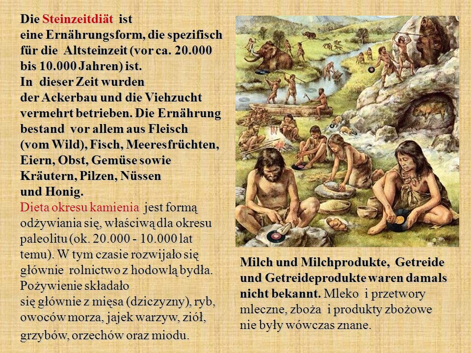 Die Steinzeitdiät ist eine Ernährungsform, die spezifisch für die Altsteinzeit (vor ca. 20.000 bis 10.000 Jahren) ist. In dieser Zeit wurden der Ackerbau und die Viehzucht vermehrt betrieben. Die Ernährung bestand vor allem aus Fleisch (vom Wild), Fisch, Meeresfrüchten, Eiern, Obst, Gemüse sowie Kräutern, Pilzen, Nüssen und Honig. Dieta okresu kamienia jest formą odżywiania się, właściwą dla okresu paleolitu (ok. 20.000 - 10.000 lat temu). W tym czasie rozwijało się głównie rolnictwo z hodowlą bydła. Pożywienie składało się głównie z mięsa (dziczyzny), ryb, owoców morza, jajek warzyw, ziół, grzybów, orzechów oraz miodu.