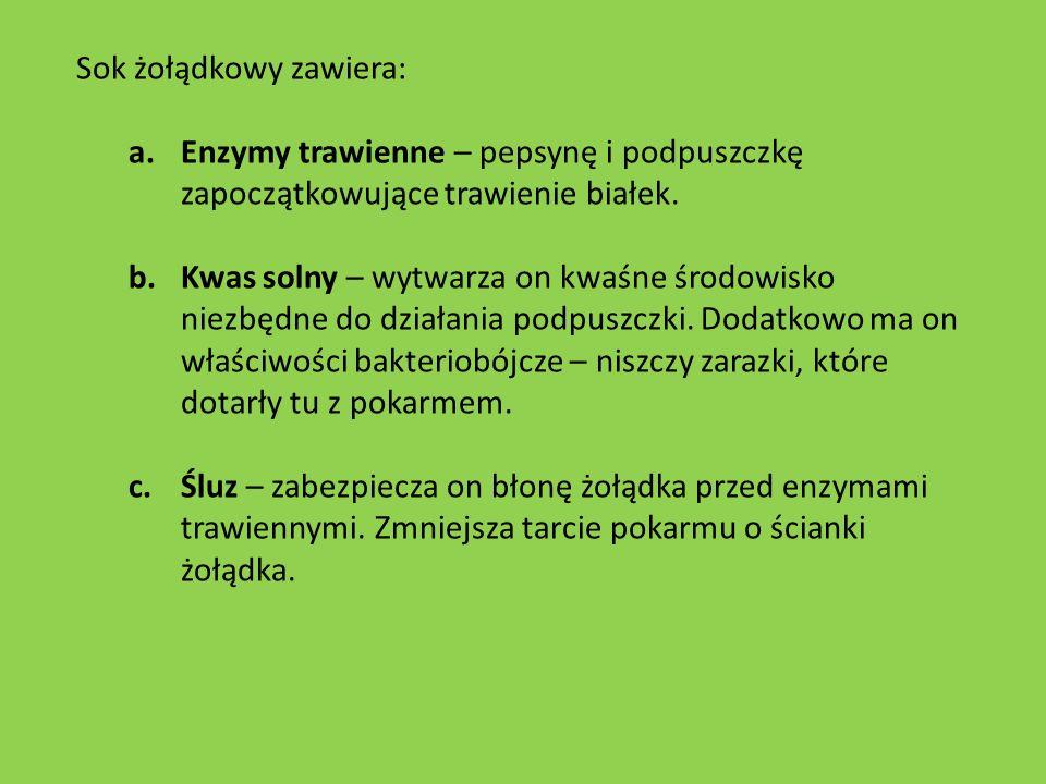 Sok żołądkowy zawiera: