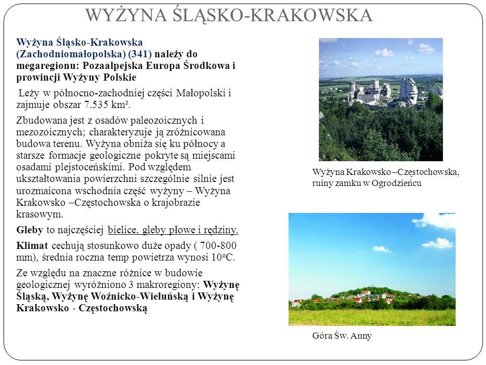 WYŻYNA ŚLĄSKO-KRAKOWSKA