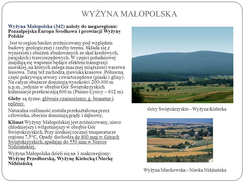 WYŻYNA MAŁOPOLSKA Wyżyna Małopolska (342) należy do megaregionu: Pozaalpejska Europa Środkowa i prowincji Wyżyny Polskie.