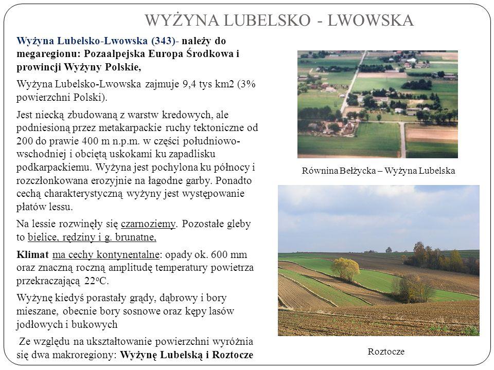 WYŻYNA LUBELSKO - LWOWSKA