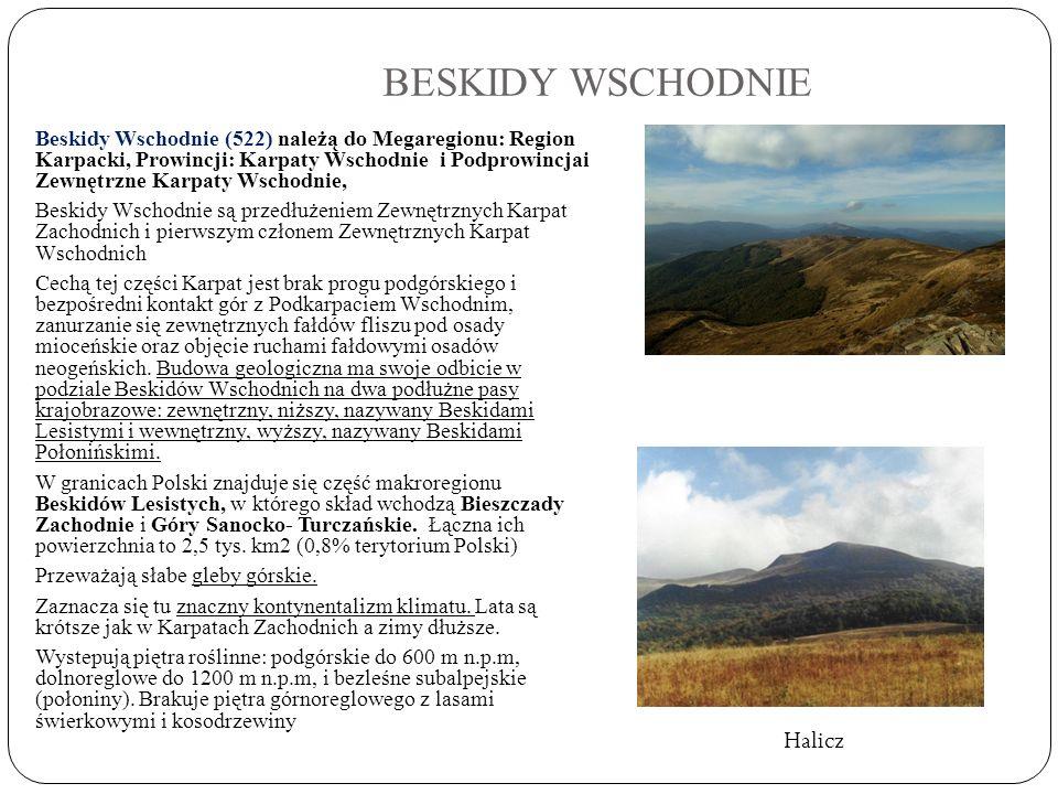 BESKIDY WSCHODNIE Halicz