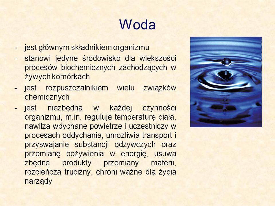 Woda jest głównym składnikiem organizmu