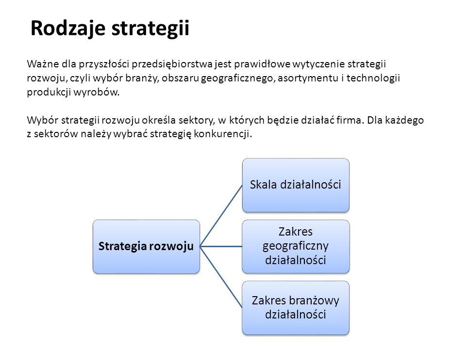 Rodzaje strategii Strategia rozwoju Skala działalności