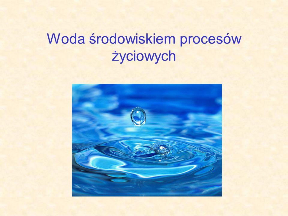 Woda środowiskiem procesów życiowych