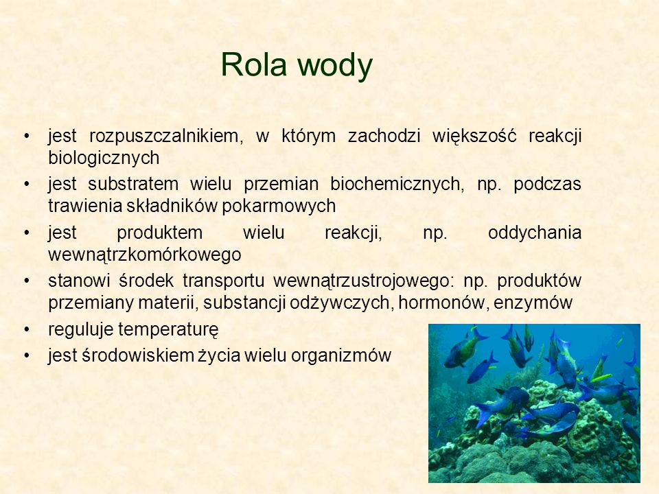 Rola wody jest rozpuszczalnikiem, w którym zachodzi większość reakcji biologicznych.