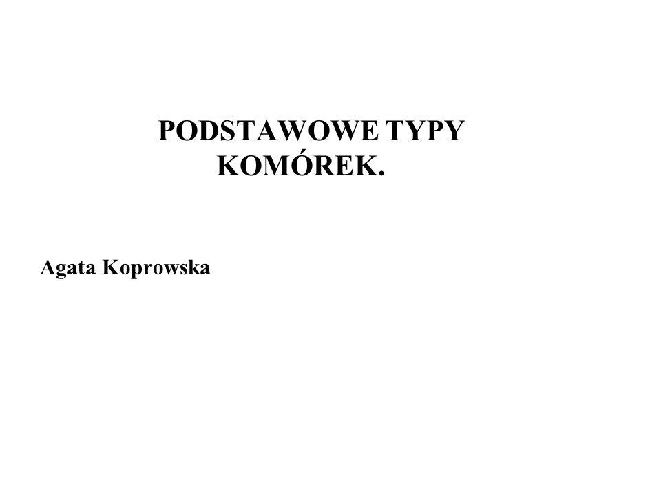 PODSTAWOWE TYPY KOMÓREK. Agata Koprowska